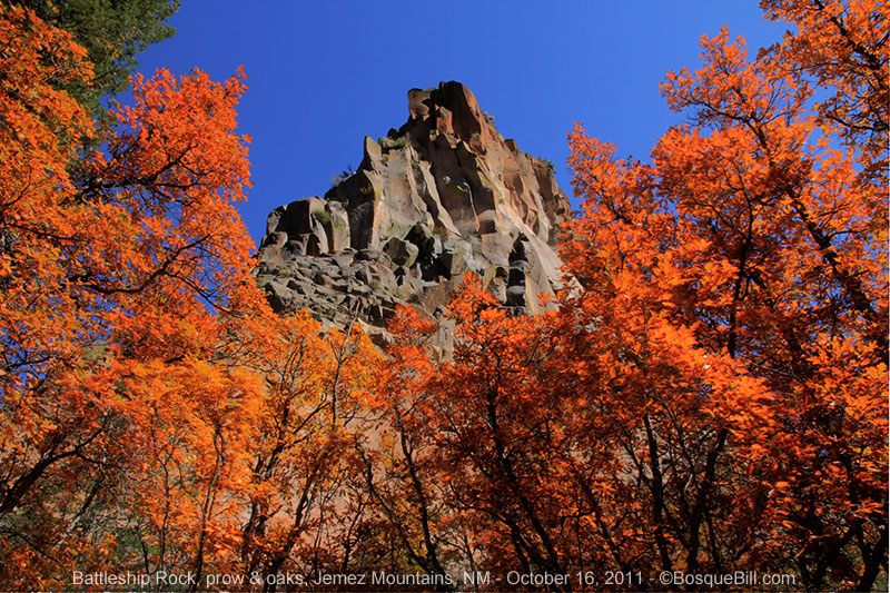 Battleship Rock and red oaks