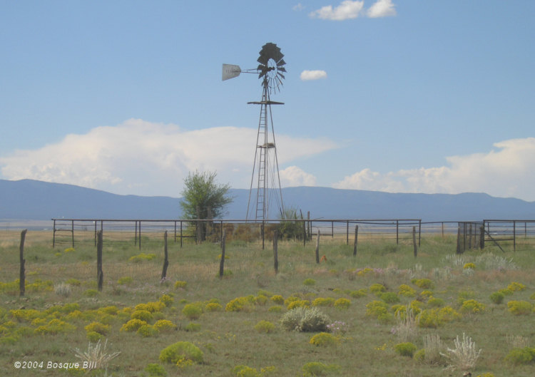 Windmill in Eastern New Mexico